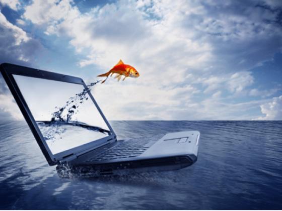 pescafacil-venta-online-marisco